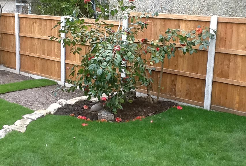 Fencing-Driveways-Patios-Paving-Garden-Maintenance-Landscaping-Sunshine-Gardens-Christchurch-Dorset-2