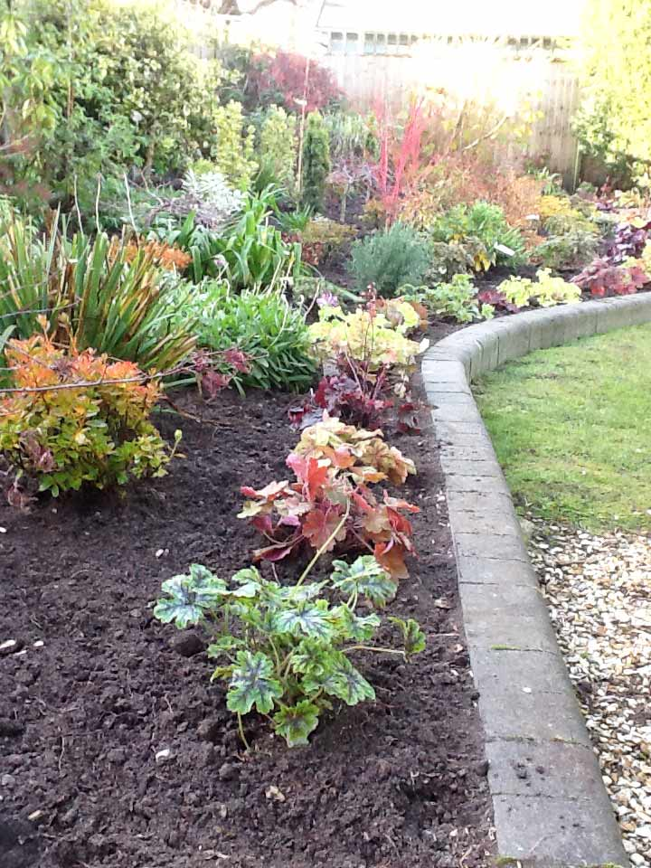 Garden-Maintenance-Landscaping-Driveways-Patios-Paving-Sunshine-Gardens-Christchurch-Dorset-3
