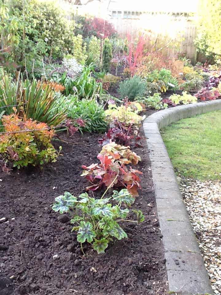 Garden-Maintenance-Landscaping-Driveways-Patios-Paving-Sunshine-Gardens-Christchurch-Dorset-3
