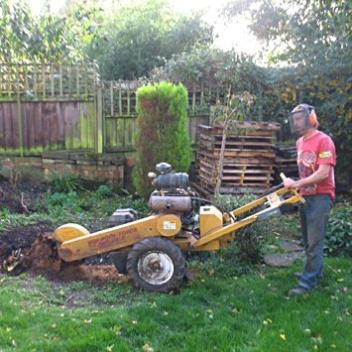 Garden-Maintenance-Landscaping-Driveways-Patios-Paving-Tree-Surgeon-Sunshine-Gardens-Christchurch-Dorset