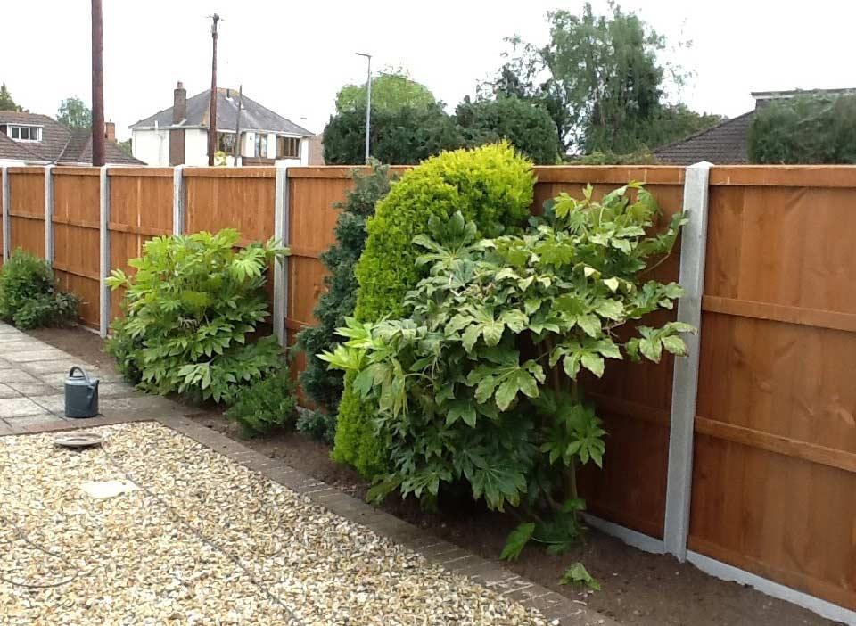 Fencing-Repair-Replacement-Garden-Maintenance-Landscaping-Sunshine-Gardens-Christchurch-Dorset-1
